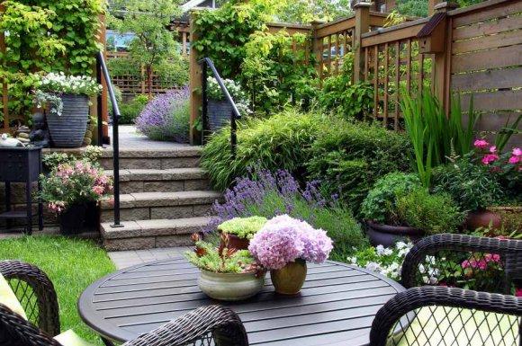 Professionnel pour la création d'un espace zen dans un jardin de particulier
